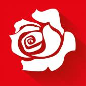 Vita rosen — Stockvektor