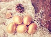 Altın yumurta — Stok fotoğraf