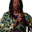 Rastafarian playing the flute — Stock Photo #65281597