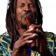Rastafarian playing the flute — Stock Photo #65282089