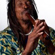 Rastafarian playing the flute — Stock Photo #65282741