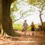 Children leaving the woods — Stock Photo #66288227