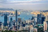 Hong Kong city — Foto de Stock