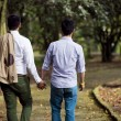 Beautiful gay couple in the park — Stock Photo #70842877