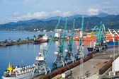 Ships, wagons and cranes in seaport — Foto Stock