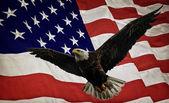 Bald Eagle and Flag — Stock Photo