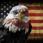 American Bald Eagle on Grunge Flag — Stock Photo #62210719