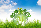Environmentally friendly planet on green grass and blue sky — Stock Photo