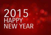 2015 Happy New Year. Vector illustration. — Stock Vector