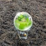 Eco friendly earth in light bulb — Stock Photo #66080293