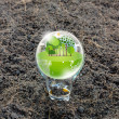 Eco friendly earth in light bulb — Stock Photo #66080293