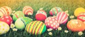 Easter Eggs with flower on Fresh Green Grass ( Filtered image pr — Stock Photo