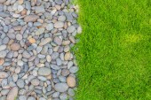 Fresh spring green grass with rock — Stock Photo