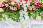 Beautiful in Wedding ceremony — Stock Photo