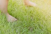 草の赤ちゃん足 — ストック写真