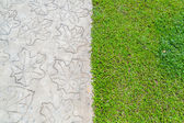 Stone path with grass — Stock Photo