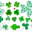 Cloverset — Stock Vector #65162571