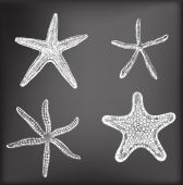 Starfishes — Stock Vector