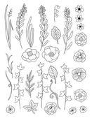 Kolekcja kwiatów — Wektor stockowy