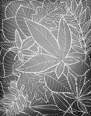 Fallen leaves — Stock Vector