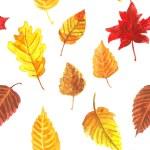 Autumn leaves pattern — Stock Vector #77711100