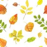 Autumn leaves pattern — Stock Vector #77711154