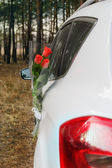 Flowers and car  — Stockfoto
