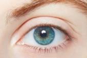 Human, blue healthy eye macro — Stock Photo
