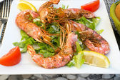Shrimps. — Stock Photo