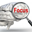 Focus word on magnifying glass and human brain — Stock Photo #65906081