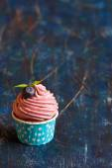 Cupcake. — Stock Photo