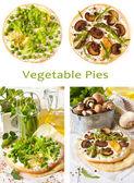 Pies. — Stock Photo