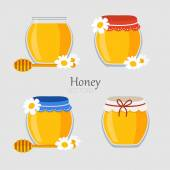 Collections of jars with honey — Stock Vector