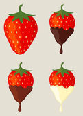 Collection of strawberries dipped in different chocolate — Stock Vector
