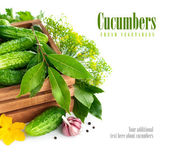 Fresh cucumbers in wooden box with green leaf and flower — Stock Photo