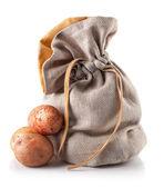 Harvest potatoes in sack — Stok fotoğraf