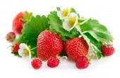 Verse aardbeien met groene bladeren en bloem — Stockfoto