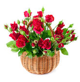 Bouquet red roses in basket — Stock Photo