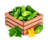 Fresh cucumber in wooden box with green leaf and flower — Stock Photo