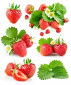 Set berry strawberry with leaves and flowers — Stock Photo