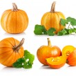 Set ripe pumpkin with green leaf — Stock Photo #62176015
