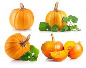 Set ripe pumpkin with green leaf — Foto de Stock