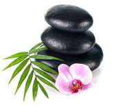 Still life with stone for spa and flower orchid — Stock Photo