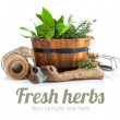 Fresh green herbs with garden tools — Stock Photo #69313477