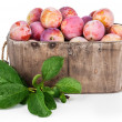 Fresh plums in wooden basket with green leaves — Stock Photo #78608242