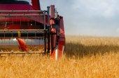 The combine harvester — Stock Photo