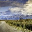Empty road on Alaska Highway — Zdjęcie stockowe #54715271