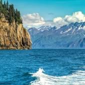 Wildlife Cruise around Resurrection Bay in Alaska — Stock Photo