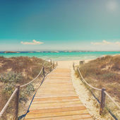 Entrance to the beach with wooden walkpath — Stock Photo