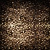 Snake leather skin background and texture  — Foto de Stock